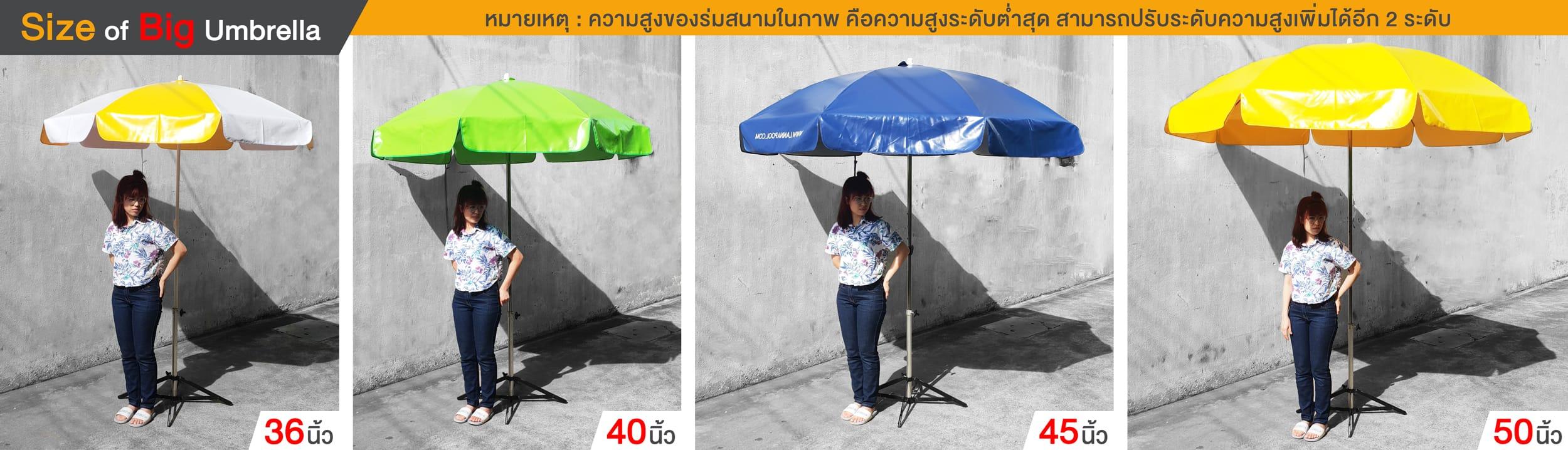 ขนามร่มสนาม